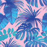 Tropical palm, banana leaves in blue style. Summer exotic floral tropical palm, banana leaves in blue style. Pattern vector seamless on the pink background Royalty Free Stock Image