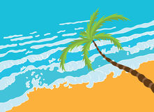 Tropical palm on the beach with sea Stock Photography