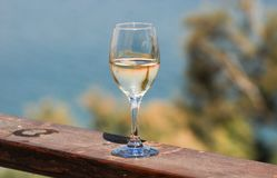 Tropical palm branches reflected in white wine glass on beach ba. Ckground stock photo