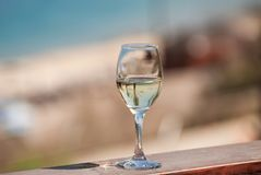 Tropical palm branches reflected in white wine glass on beach ba. Ckground stock images