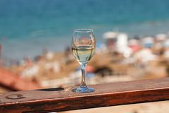 Tropical palm branches reflected in white wine glass on beach ba. Ckground royalty free stock images