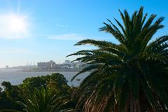 Tropical palm coast near Montevideo town. Stock Photography