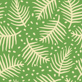 Tropical palm or ferm leaves. Seamless pattern. Vector illustration. Handdrawn Royalty Free Stock Photography