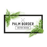 Tropical Palm Leaf Border Vector Stock Image