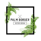 Tropical Palm Leaf Border Vector Royalty Free Stock Photos
