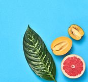 Tropical palm leaf, fruits. Bright summer set. Vegan. Vegan. Tropical summer design set. Palm leaf and fresh fruits. Trendy fashion concept. Flat lay. Creative stock photography