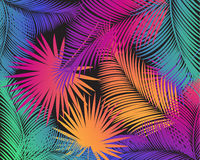 Tropical Palm Leaf Pattern Watercolor Stock Photo