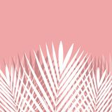 Tropical Palm leaf on pink background. Vector Stock Photos
