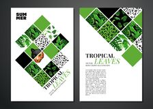 Tropical palm leaves background. royalty free illustration