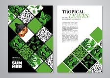 Tropical palm leaves background. vector illustration