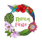 Tropical palm leaves, birds, flowers round frame, place for text Royalty Free Stock Images