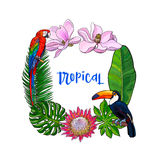 Tropical palm leaves, birds, flowers square frame, place for text Stock Photography
