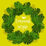 Tropical Palm Leaves for design elements. royalty free stock images