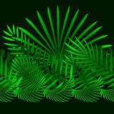 Tropical and palm leaves elements as green horizontal pattern royalty free illustration