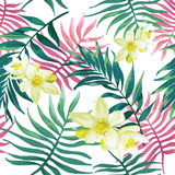 Tropical palm leaves, fern and white flowers. Tropical palm leaves, fern, jungle leaves and white flowers. Seamless pattern Royalty Free Stock Photos