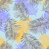 Tropical palm leaves, jungle leaves seamless vector floral pattern background. stock illustration