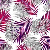 Tropical palm leaves, jungle leaves seamless vector floral pattern background. royalty free illustration