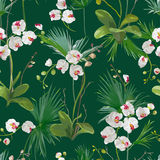 Tropical Palm Leaves and Orchid Flowers Background. Seamless Pattern Stock Photo