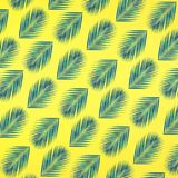Tropical palm leaves pattern on pastel color background.Nature. And holiday summer concepts.Floral elements royalty free stock photos