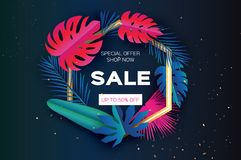 Tropical palm leaves, plants. Colorful Trendy Sale Template banner. Exotic Paper cut art. Hawaiian. Text. Hexagon frame Royalty Free Stock Photos