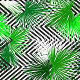 Tropical palm leaves seamless background. Vector illustration. bright tropical leaves on a contrasting geometric background. Eps 10 royalty free illustration