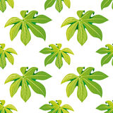Tropical palm leaves seamless floral pattern background for decorative and display purpose.Ideal for florist,event promotions,wedd Royalty Free Stock Photo