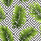 Tropical  palm leaves seamless geometric background. Vector illustration Royalty Free Stock Image