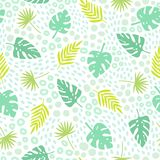 Tropical palm leaves seamless pattern. Cute cartoon style. Vector hand drawn botanic illustration Stock Photography