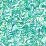 Tropical palm leaves in a seamless pattern on a white background.  Royalty Free Stock Image