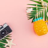 Tropical palm leaves vacations pink background. Creative flat lay top view of green tropical palm leaves and old photo camera on millennial pink paper background royalty free stock photos