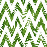 Tropical Palm leaves. Vector seamless Stock Image