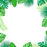 Tropical palm leaves vector square frame. White background with place for text. Jungle summer cartoon illustration. Tropical palm leaves vector square frame stock illustration