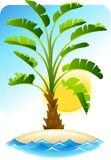 Tropical palm with sea on sunny background.  Stock Image