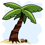 Tropical palm tree colorful sketch illustration Stock Photos