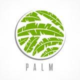 Tropical palm tree emblem green Stock Image