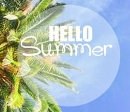 Tropical palm tree. Fresh leaves border on blue sky with hello summer greeting Stock Photo