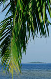 Tropical palm tree and island. Concept of tropical relaxation, resort, vacation and leisure: palm tree leaf detail in front with an exotic pristine island in the Royalty Free Stock Photos