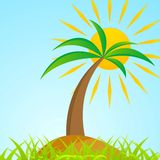 Tropical palm tree on island with shiny sun Stock Image