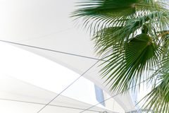 Tropical palm tree, light awning, beautiful luxury building, blue cloudy sunshine reflection. Background Royalty Free Stock Photos