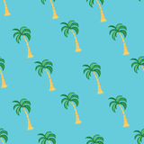 Tropical palm tree seamless pattern on the blue background. Vector illustration. Stock Photography