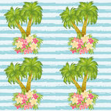 Tropical palm tree seamless pattern, vector Royalty Free Stock Images
