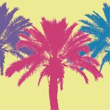 Tropical palm tree silhouettes. Vector illustration Royalty Free Stock Photos