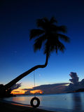 Tropical Palm Tree Sunset. A quiet sunset on one of Tortola's most popular sights Stock Photos