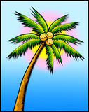 Tropical palm tree w/sun stock photo