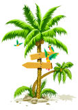 Tropical palm tree with wooden signs and parrots Stock Photos