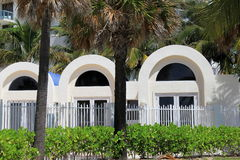 Tropical palm trees in front of arched doorways Stock Photos