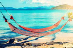 Tropical Palm Trees and Hammock at Thailand Summer Stock Photos