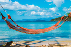Tropical Palm Trees and Hammock at Trat in Thailand Summer Stock Photos