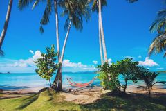 Tropical Palm Trees and Hammock at Trat in Thailand Summer Royalty Free Stock Photo