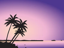 Tropical palm trees and sea Stock Image